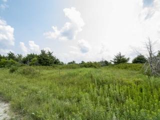 (WILSON) 39.40 +/- Recreational Acres on Lane Rd