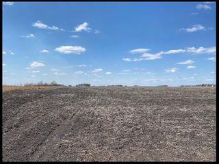 ZOLLNER PRIME MULTI-PARCEL RENVILLE CO. FARM LAND
