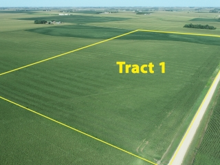 OCTOBER 26, 2021 @10:30 A.M.�LIVE ONSITE FARMLAND AUCTION OF 161.29 ACRES OF ELGIN TWP, LYON COUNTY FARMLAND TO BE SOLD IN TWO TRACTS