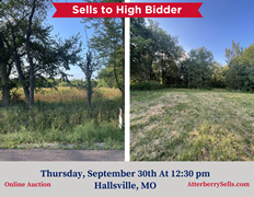 22 +/- ac. Open & Wooded With Blacktop Frontage - Sells to the High Bidder, 8800 E. Old Hwy. 124, Hallsville, MO