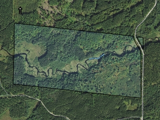 84+/- ACRES OF HUNTING LAND