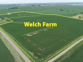 NOVEMBER 16, 2021 @ 10:30 A.M. LIVE PUBLIC AUCTION OF 73.14 ACRES OF BUNCOMBE TWP, SIOUX COUNTY, IA FARMLAND