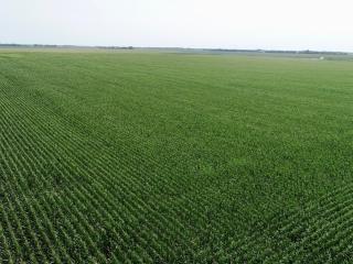 160 Acre Adams County, Nebraska Pivot Irrigated LAND AUCTION