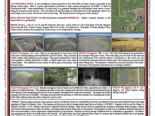 Auction: 296+/-ac - 4 tracts - Chase Co Flint Hills