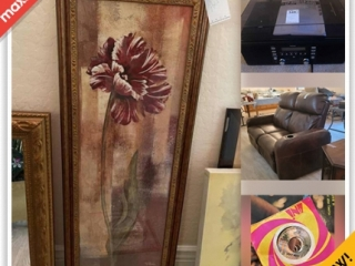 Chandler Downsizing Online Auction - E Knox Road (CONDO